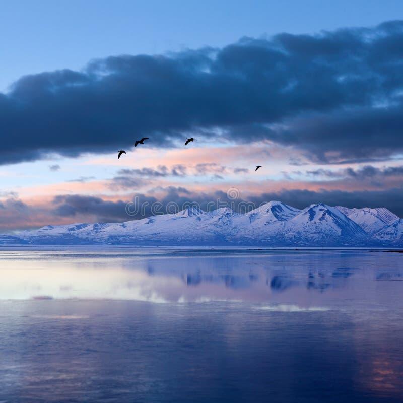 Lago Manasarovar nel Tibet occidentale fotografia stock libera da diritti