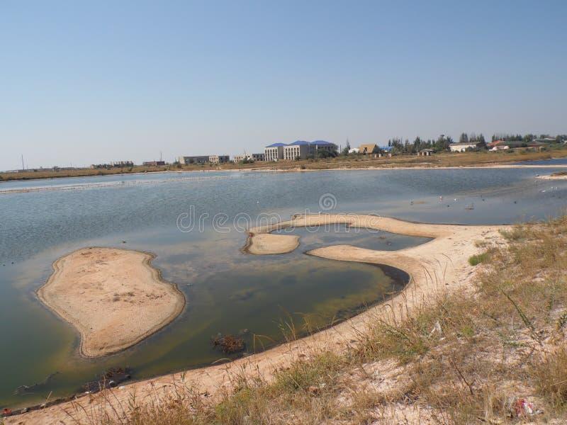 Lago marino con una isla y las gaviotas foto de archivo libre de regalías