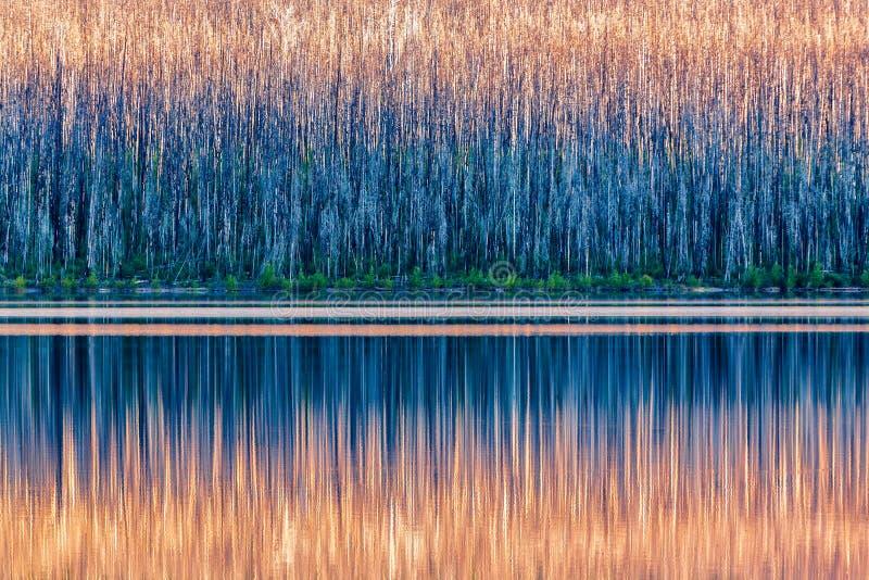 Lago McDonald, sosta nazionale del ghiacciaio fotografia stock libera da diritti