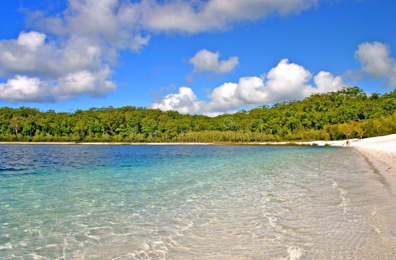 Lago McKenzie, isla de Fraser, Australia imagen de archivo libre de regalías