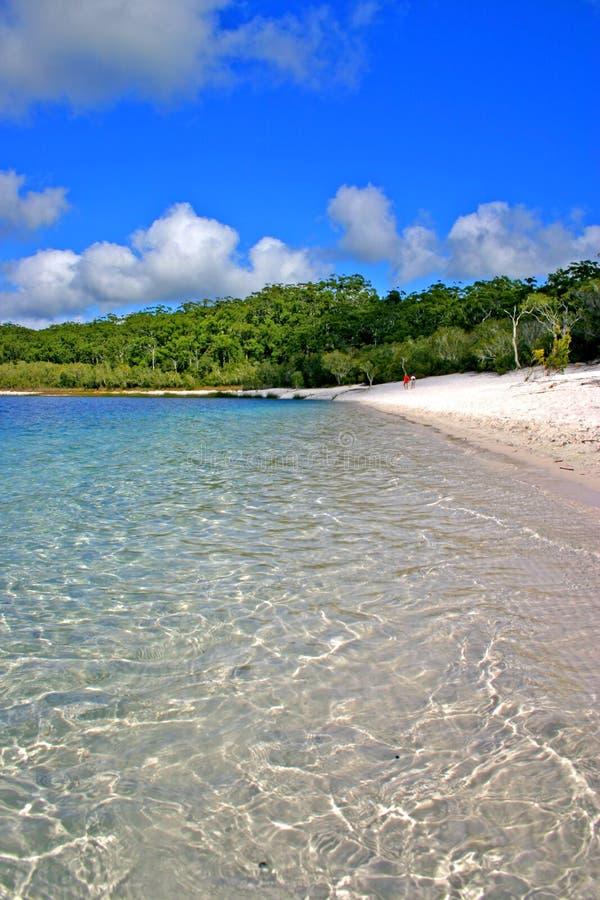 Lago McKenzie, isola di Fraser, Australia fotografia stock libera da diritti