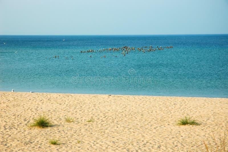 Lago Michigan fotos de archivo libres de regalías