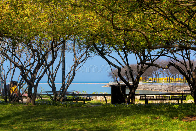 Lago Michigan chicago imagens de stock royalty free