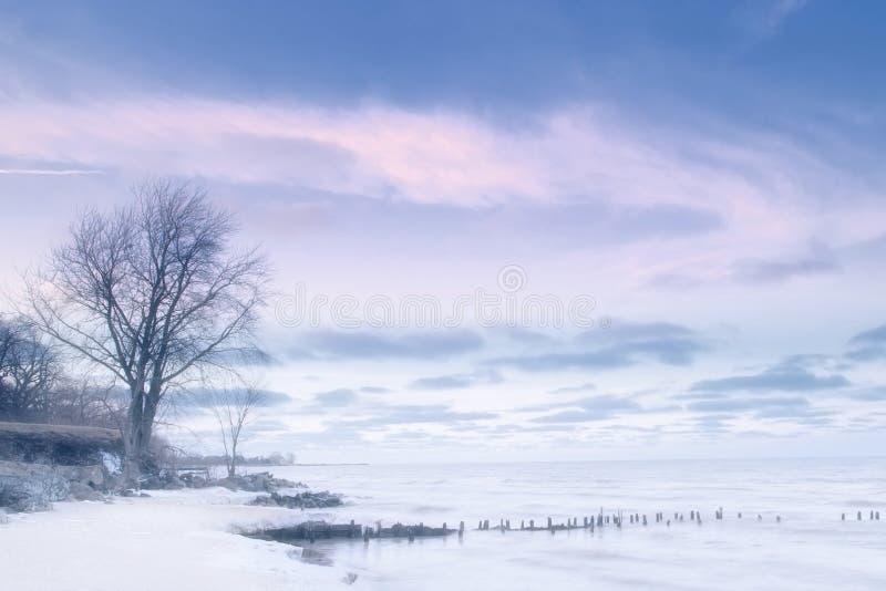 Lago Michigan en el invierno fotografía de archivo