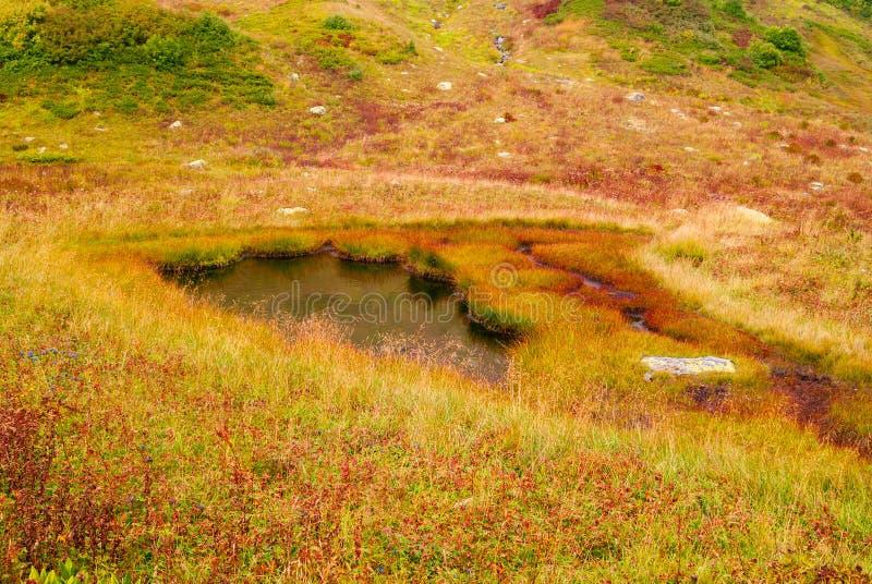 Lago minúsculo de la montaña fotografía de archivo libre de regalías