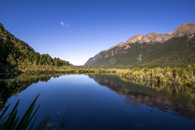 Lago mirror foto de stock