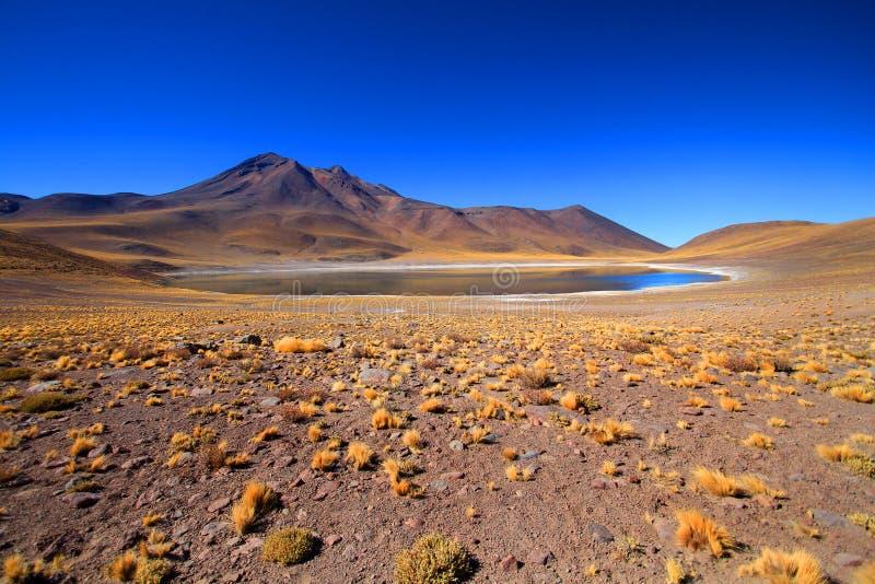 Lago Miscanti imagen de archivo libre de regalías