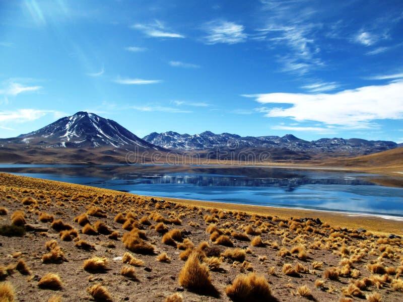 Lago Miscanti no Chile imagem de stock
