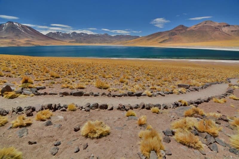 Lago Miscanti ou Laguna Miscanti Reserva nacional dos flamencos do Los Região de Antofagasta chile foto de stock