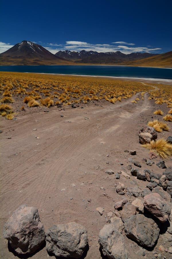 Lago Miscanti ou Laguna Miscanti Reserva nacional dos flamencos do Los Região de Antofagasta chile foto de stock royalty free
