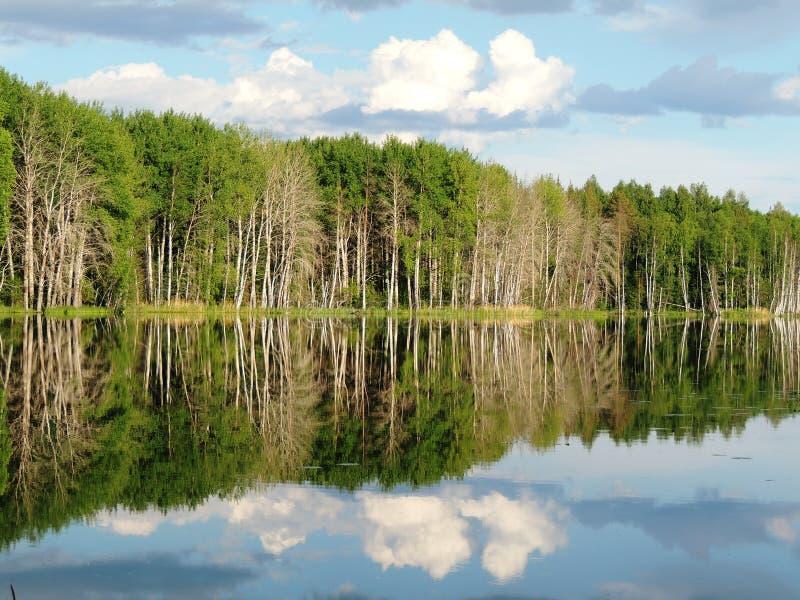 Lago misterioso immagini stock libere da diritti