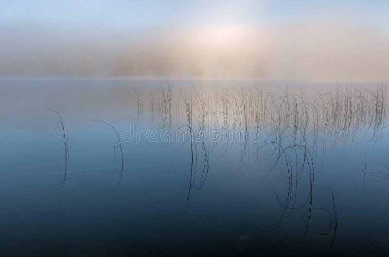 Lago Moccasin na névoa imagem de stock royalty free