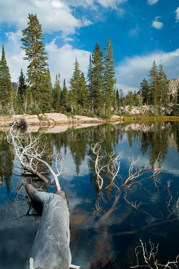 Lago mountain fotos de stock
