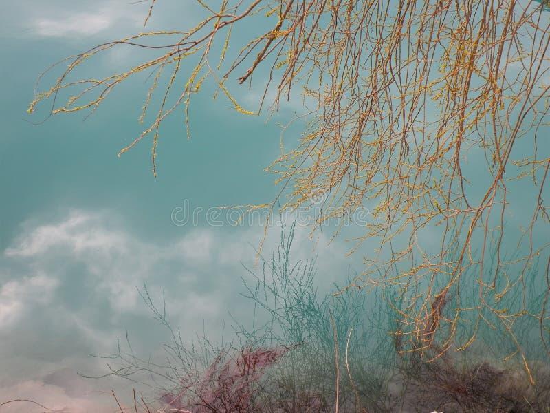 Lago mountain com água azul de turquesa e reflexão dos ramos na água foto de stock