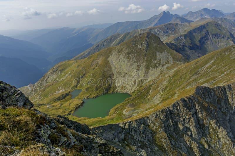 Lago mountain com água claro da cor esmeralda Ajardine do lago capra em montanhas de Romênia e de Fagaras no verão imagens de stock