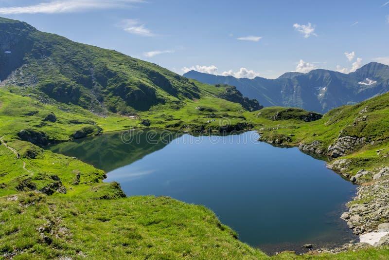 Lago mountain com água claro da cor esmeralda Ajardine do lago capra em montanhas de Romênia e de Fagaras no verão imagem de stock royalty free