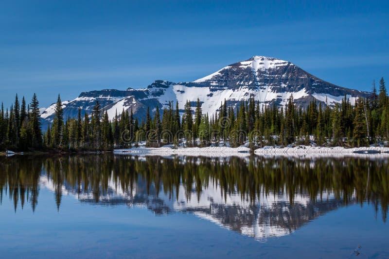 Lago mountain em lagos parque nacional Waterton, Canadá fotos de stock royalty free