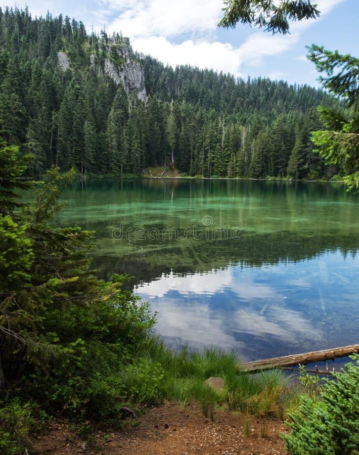 Lago mountain en el verano imágenes de archivo libres de regalías
