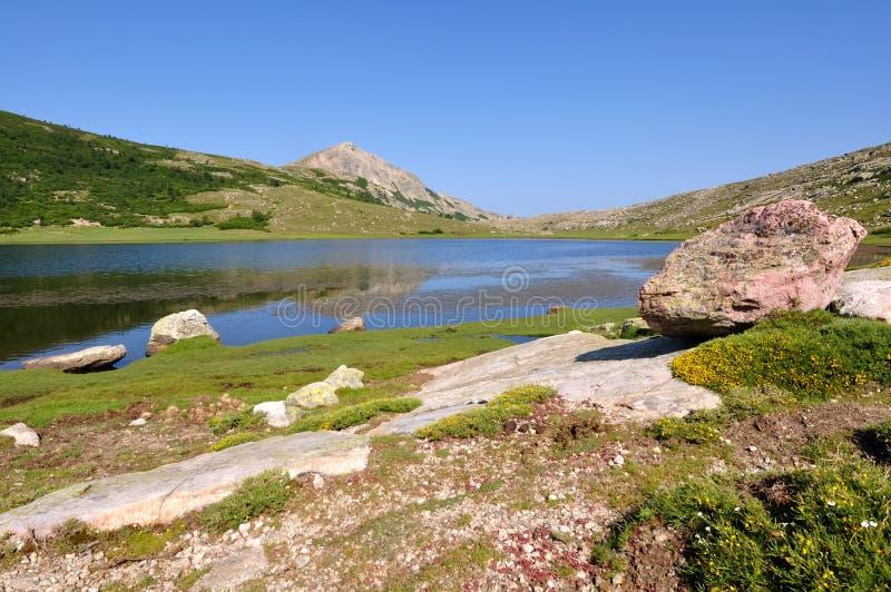 Lago mountain (Nino, Córcega) imagenes de archivo