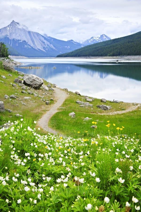 Lago mountain no parque nacional do jaspe, Canadá fotografia de stock