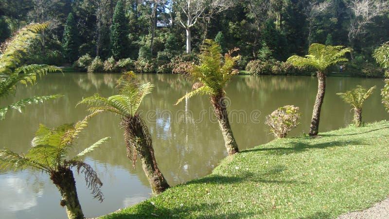 Lago murzyna widok zdjęcia stock