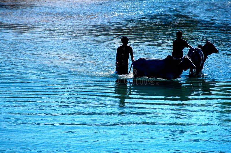 Lago Myanmar (Birmania) Inle fotos de archivo libres de regalías