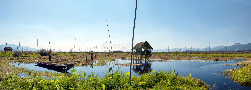 Lago Myanmar Inle, estado de Shan Jardins de flutuação imagens de stock royalty free