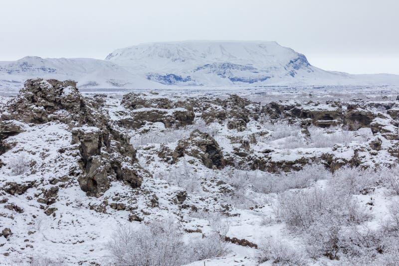 Lago Myvatn Dimmuborgir da paisagem do inverno, Islândia fotografia de stock