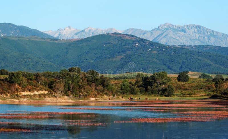 Lago na costela Serena imagem de stock