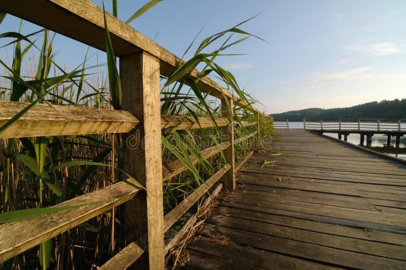 Lago na região Poland de Mazury imagem de stock royalty free