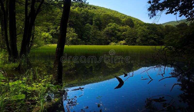 Lago nas montanhas fotografia de stock royalty free