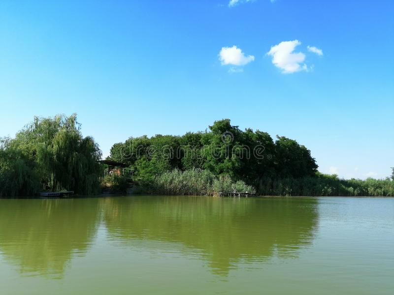Lago, natura sulla riva e contro il cielo Giorno pieno di sole di estate fotografie stock