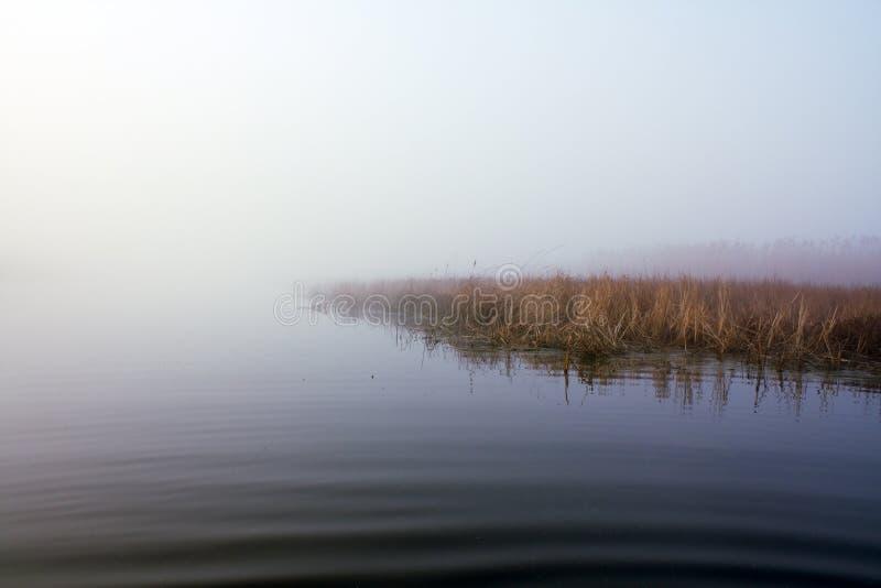 Lago in nebbia fotografia stock libera da diritti
