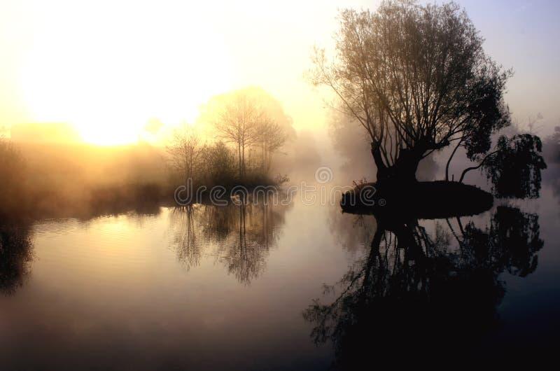 Lago nebbioso drammatico ad alba fotografia stock