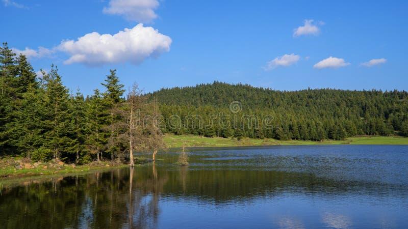 Lago nel lago Bolu della foresta-Dorukkaya in Turchia fotografia stock
