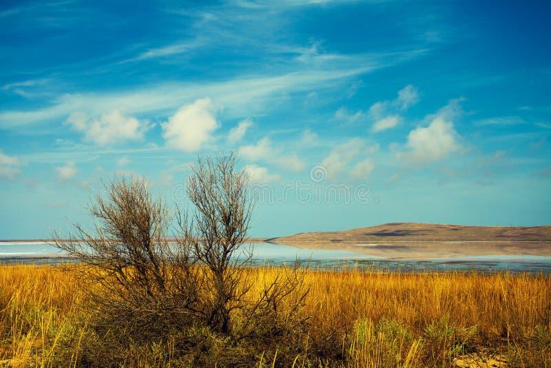 Lago nel deserto immagine stock