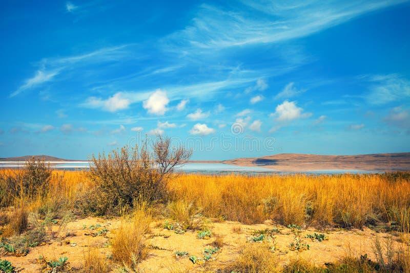 Lago nel deserto immagine stock libera da diritti