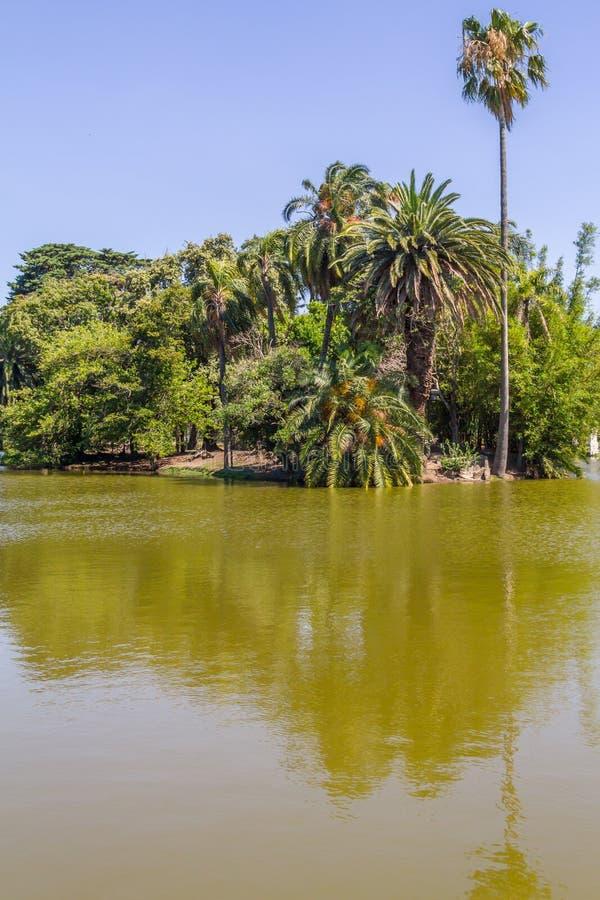 Lago nel parco di Bosques de Palermo fotografia stock libera da diritti