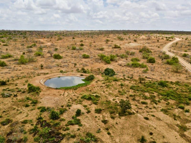 Lago nel parco nazionale di Tsavo della savanna immagine stock libera da diritti