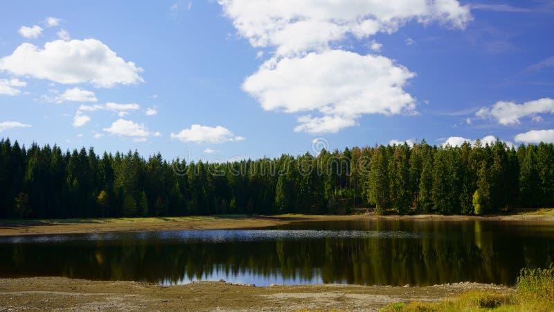 Lago nella foresta delle montagne di Harz Stagno pittoresco di estrazione mineraria vicino a Clausthal-Zellerfeld in Bassa Sasson immagini stock