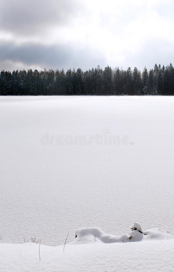 Lago nevado no inverno fotografia de stock royalty free