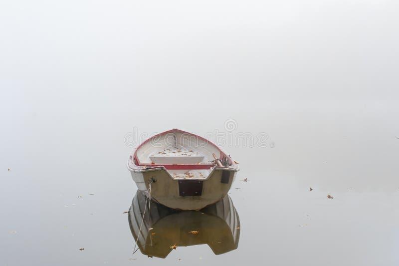 Lago nevoento fotografia de stock royalty free