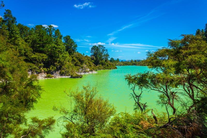 Lago Ngakoro Rotorua Nueva Zelanda imagenes de archivo