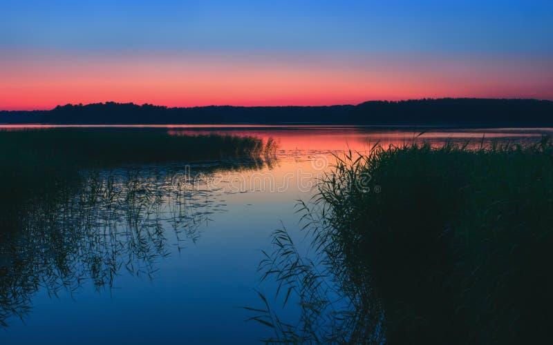 Lago night con las cañas después de la puesta del sol imagen de archivo