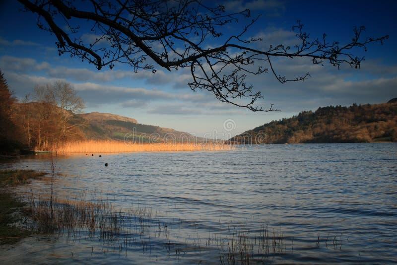 Lago no dia ensolarado em ireland fotografia de stock