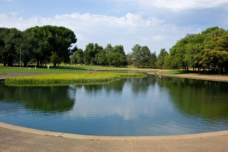 Lago no parque imagem de stock royalty free