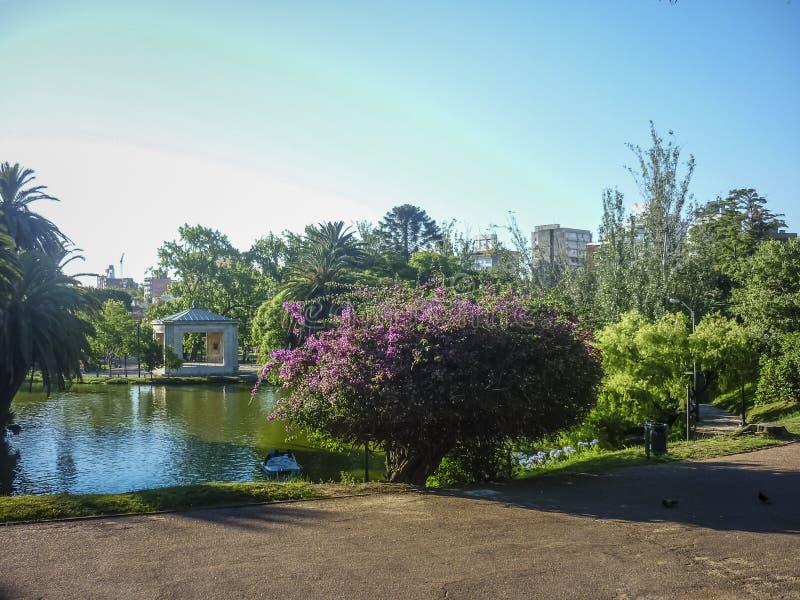 Lago no parque em Montevideo fotos de stock royalty free
