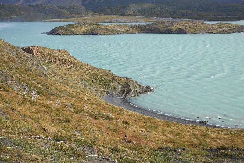 Lago Nordenskjold, parc national de Torres del Paine, Chili photographie stock