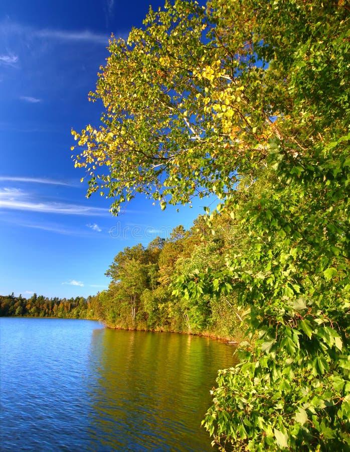 Lago Northwoods Wisconsin Sweeney imagenes de archivo