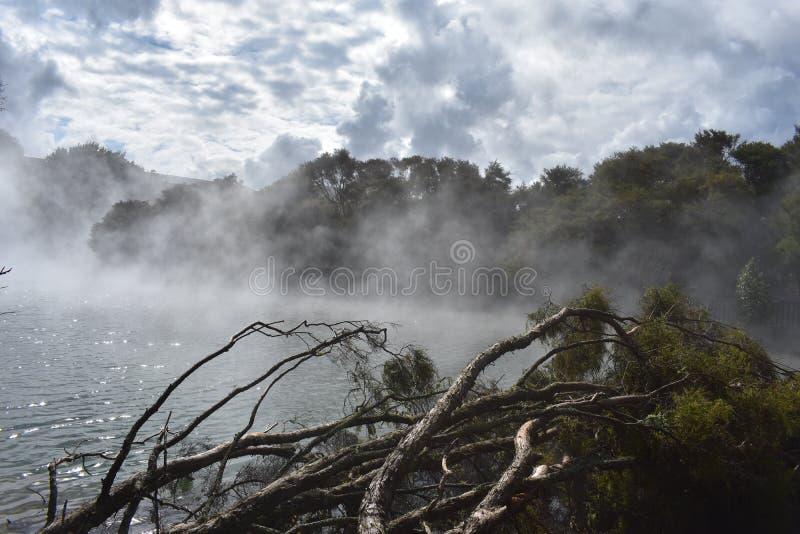 Lago Nuova Zelanda steam immagine stock libera da diritti